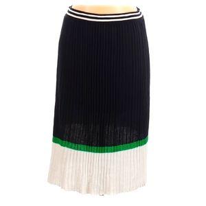 Ralph Lauren Woman's 2X pleated Casual Skirt